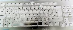 keyboard earphones