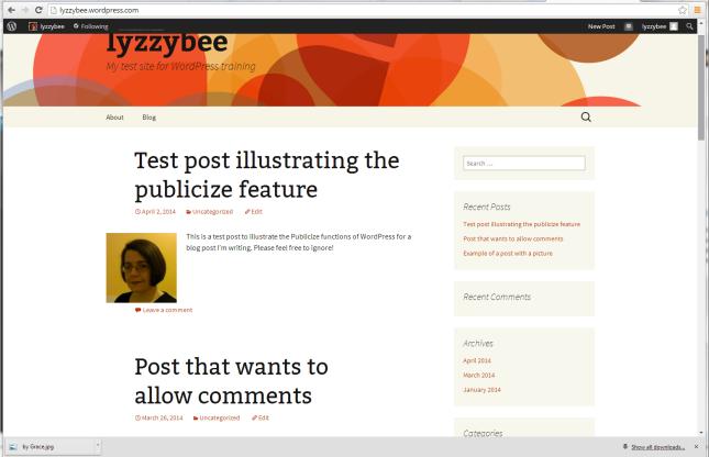 default WordPress view - blog posts
