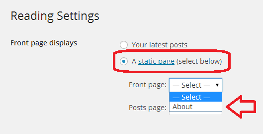 Choose a static page