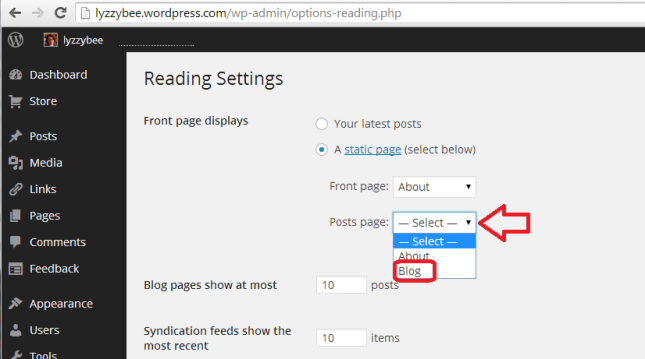 Setting the posts page