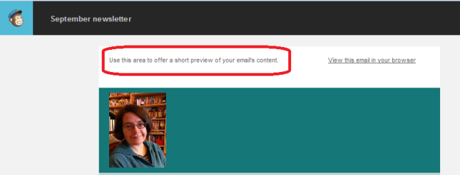 Sample teaser text in MailChimp