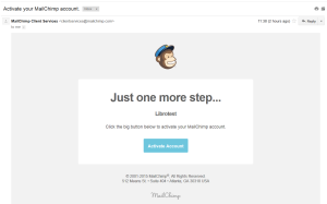 mailchimp validation email