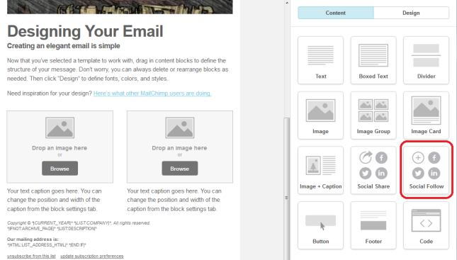MailChimp template social follow