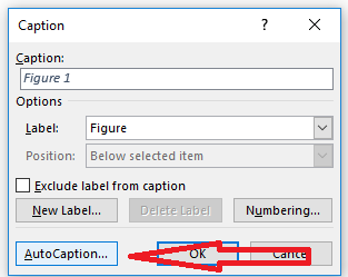 auto caption menu in word